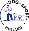 logo DSH.png