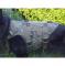 image_EwImage=2166b8ea-26e3-4d86-ae76-4be6c6b3065a&Filter=042cdaac-4610-40de-a462-c4d4435cec81.jpg